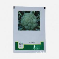 Cauliflower - Payal